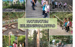 Naturatum Erlebniswaldpfad mit XXL Kugelbahn